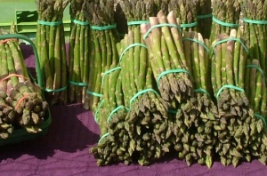 English asparagus at its very best